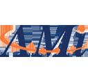 ami_logo resized